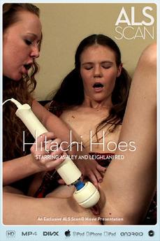 Hitachi Hoes