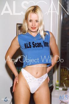 Any Object Will Do