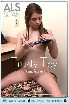 Trusty Toy