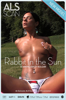 Rabbit in the Sun
