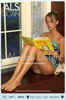 Window Delight