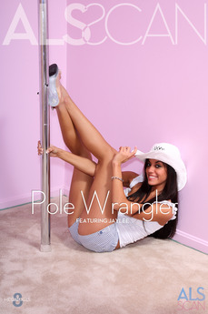 Pole Wrangler