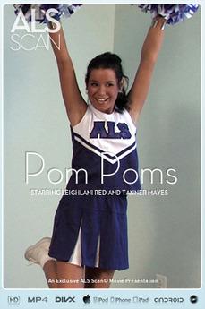 Pom Poms