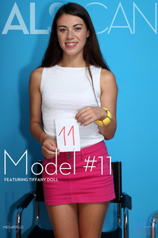 Model #11
