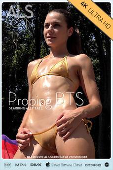 Probing BTS